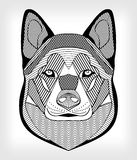 Malamute hound head, black and white drawing on gray background.  symmetric head with hatching and patterns. For use as ta Stock Photos