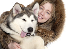 Malamute puppy with a girl Stock Images