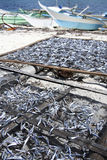 Malapascua dried fish fishing boats philippines Stock Photos