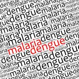 Malaria and dengue info text Royalty Free Stock Images