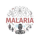 Malaria line icon banner. Infographics. Symptoms, Vector signs for web graphics. Malaria line icon Infographics. Symptoms, Treatment. Vector signs for web vector illustration