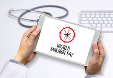 MALARIA mosquito sucking blood World Malaria Day Zika virus aler Royalty Free Stock Images