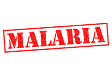 MALARIA Stock Photography