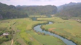 Malarska spokojna błękitna rzeka odbija drzewo zieleni pola blisko zbiory