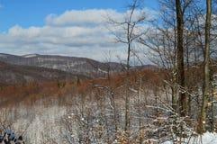 Malarskie śnieżne góry Fotografia Stock