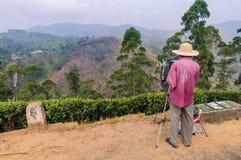 Malarzów remisy na naturze Zdjęcia Royalty Free