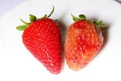 Malas fresas rojas estropeadas sanas y putrefactas Fotos de archivo libres de regalías