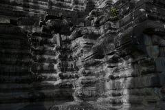 Malas hierbas de la piedra del templo de Angkor Wat Fotografía de archivo libre de regalías