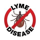 Malattia di Lyme Tick Bite Icon Fotografie Stock