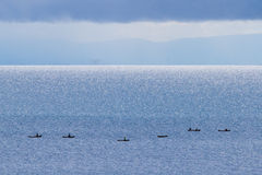 Malawi canoes. Canoes on lake Malawi on an overcast day royalty free stock photo