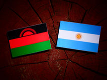 Malawi flag with Argentinian flag on a tree stump  Royalty Free Stock Image