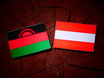 Malawi flag with Austrian flag on a tree stump  Royalty Free Stock Photo