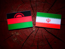 Malawi flag with Iranian flag on a tree stump isolated. Malawi flag with Iranian flag on a tree stump Stock Images