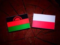 Malawi flag with Polish flag on a tree stump isolated. Malawi flag with Polish flag on a tree stump stock illustration