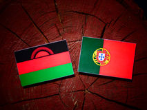 Malawi flag with Portuguese flag on a tree stump isolated. Malawi flag with Portuguese flag on a tree stump stock illustration