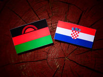 Malawi flagga med den kroatiska flaggan på en trädstubbe Royaltyfri Foto