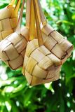 Malay compact glutinous rice. Traditional Malay compact glutinous rice called Ketupat for celebrations Royalty Free Stock Photos
