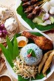 Malay rice dish. Nasi kerabu, popular Malaysian Malay rice dish. Traditional east coast blue rice. Famous in states such as Terengganu or Kelantan . Malaysia royalty free stock photo