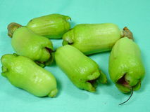 Malay rose apple fruit bud Stock Images
