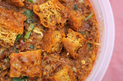 Malay traditional vegetarian curry Royalty Free Stock Photos