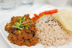 Malay vegetarian chicken or mutton red rice Royalty Free Stock Photography