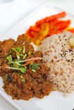 Malay vegetarian rendang chicken or mutton rice Stock Image