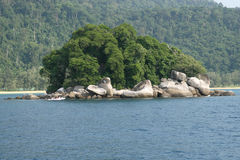 Malaysia beach in Tioman Royalty Free Stock Images