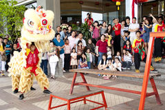 Malaysia Celebrate Chinese New Year stock images