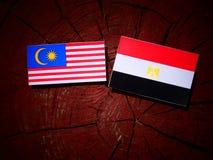 Malaysia flag with Egyptian flag on a tree stump. Malaysia flag with Egyptian flag on a tree stump Royalty Free Stock Photo