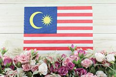 Malaysia flag and flower on wood background Stock Images