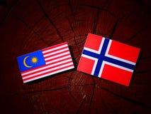 Malaysia flag with Norwegian flag on a tree stump isolated. Malaysia flag with Norwegian flag on a tree stump Stock Photos
