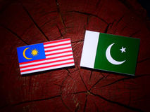 Malaysia flag with Pakistan flag on a tree stump isolated Stock Images