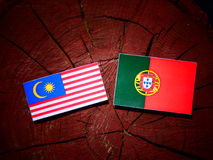 Malaysia flag with Portuguese flag on a tree stump isolated Royalty Free Stock Photo