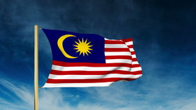 Malaysia flag slider style. Waving in the wind stock video