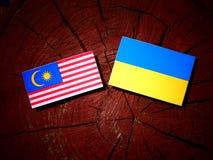 Malaysia flag with Ukrainian flag on a tree stump isolated. Malaysia flag with Ukrainian flag on a tree stump Royalty Free Stock Photos
