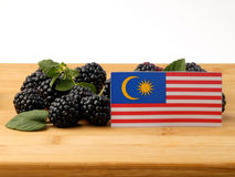 Malaysia flag on a wooden panel with blackberries isolated on a Stock Photography