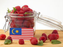 Malaysia flag on a wooden panel with raspberries isolated on a w Royalty Free Stock Images