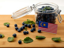 Malaysia flag on a wooden plank with blueberries  on whi Stock Image