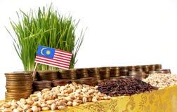 Malaysia flagga som vinkar med bunten av pengarmynt och högar av vete Royaltyfri Fotografi