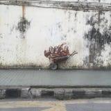 Malaysia Kuching Royaltyfri Bild