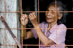 Portrait of an indigenous village woman looking from the window of wooden house royalty free stock photography
