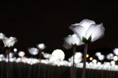 Malaysia-Lichtempfindung Stockbilder