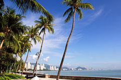 Malaysia, Penang: City view. A heavenly view with blue sky and sandy beachs outline by coconut trees Stock Photo