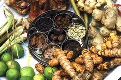 malaysia penang kryddor Fotografering för Bildbyråer