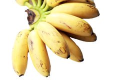 Malaysia's local bananas on white. Bunch of local bananas called 'pisang emas' on isolated background Stock Photo