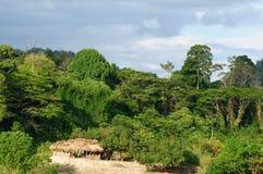 Malaysia, Taman Negara Royalty Free Stock Photo