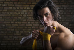 Malaysian boxer Royalty Free Stock Photography