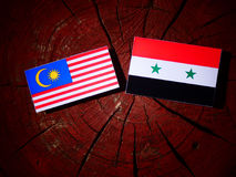 Malaysian flag with Syrian flag on a tree stump  Royalty Free Stock Photos