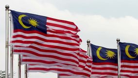 Malaysian flags fluttering in the wind stock video