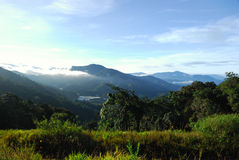 Malaysian Landscape. A beautiful landscape in the morning in the Cameron highland, Malaysia Stock Photography